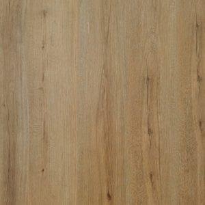 Fertile Oak