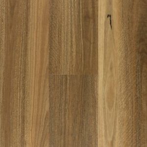 secented spotted gum